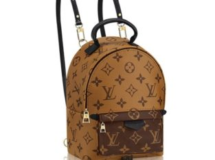 LOUIS VUITTON Palm Springs Киев Украина женский рюкзак сумка кросс боди