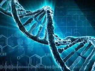 Приглашаем принять участие в создании Научно — Религиозной организации