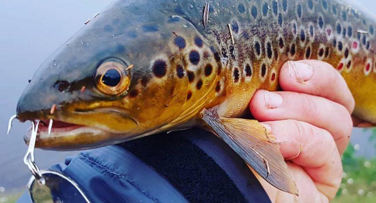 Рыболовные крючки оптом — лучшие цены, высокое качество