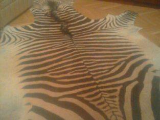 Продам шкуру зебры