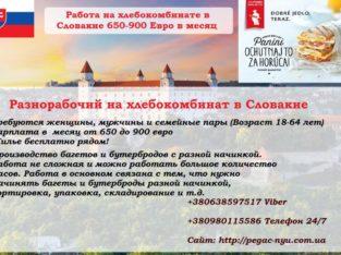 Работа на Производство булочек и багетов в Словакии 650-900 евро в месяц
